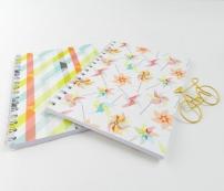 pastel notebook duo